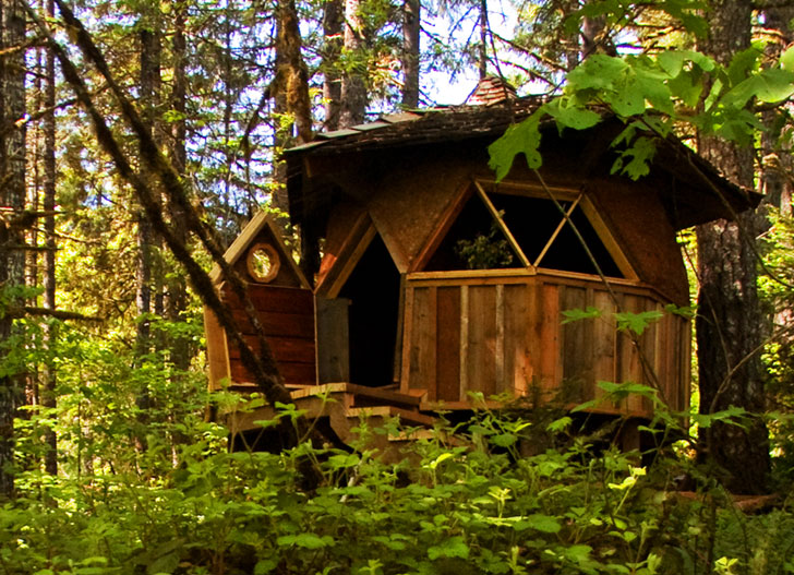 dome-home-in-forest